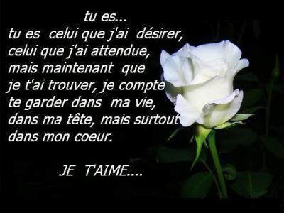 Rose Je T Aime