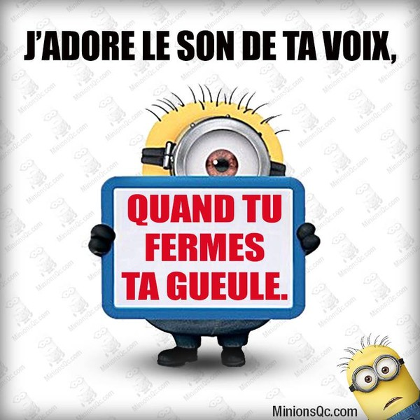 Humour po mes images page 3 - Les minions bonne annee ...